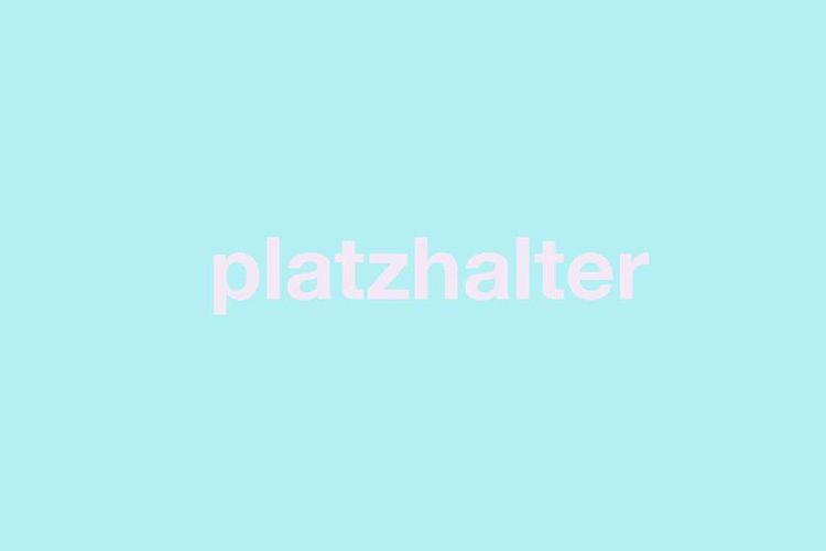 """blauer Hintergrund, davor steht relativ groß in rosa """"Platzhalter"""""""